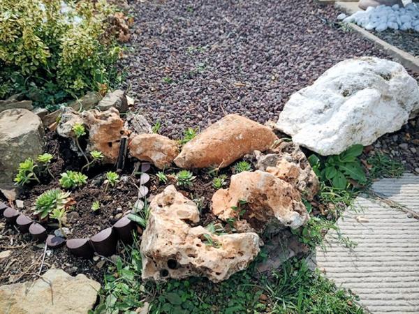 Giardino Privato - Ortignano Raggiolo (AR)