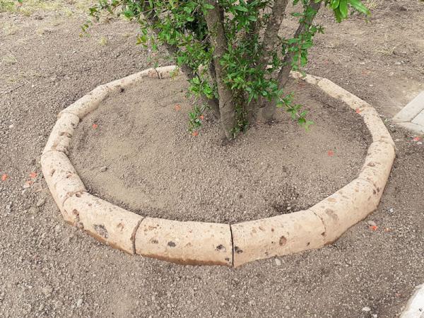 giardino privato - Spilamberto MO