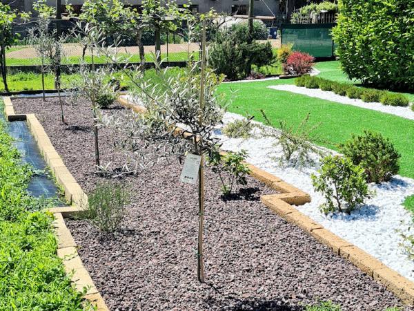 Giardino privato - Terrazzo VR