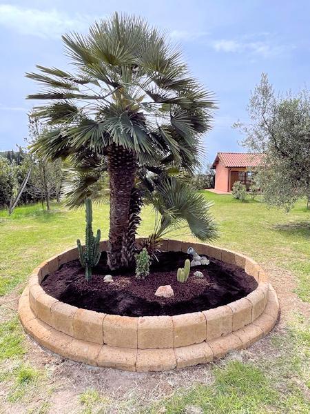 Giardino privato -  SUVERETO (LI)