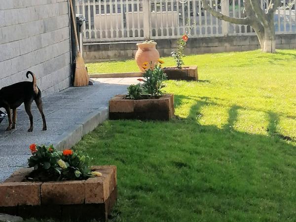 Giardino privato -  Mappano (TO)
