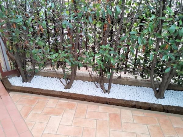 Giardino Privato - Samarate  Varese