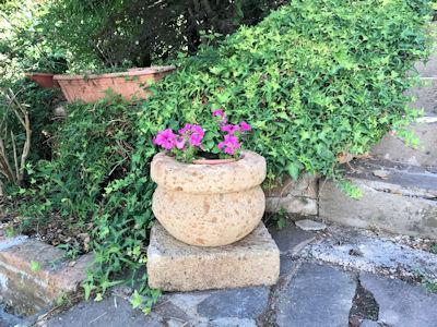 Giardino Privato - Montecompatri