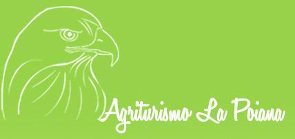 Agriturismo Ristrutturato Con Diverse Tipologie Di Tufo, Per Muretti, Camminamenti, Bordure, Pavimenti