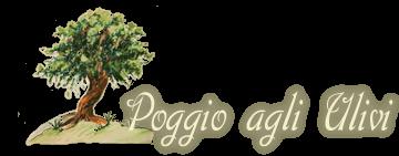 Agriturismo Ristrutturato All' Esterno Con Muretti Di Tufo Ed Elementi Di Arredo Giardino